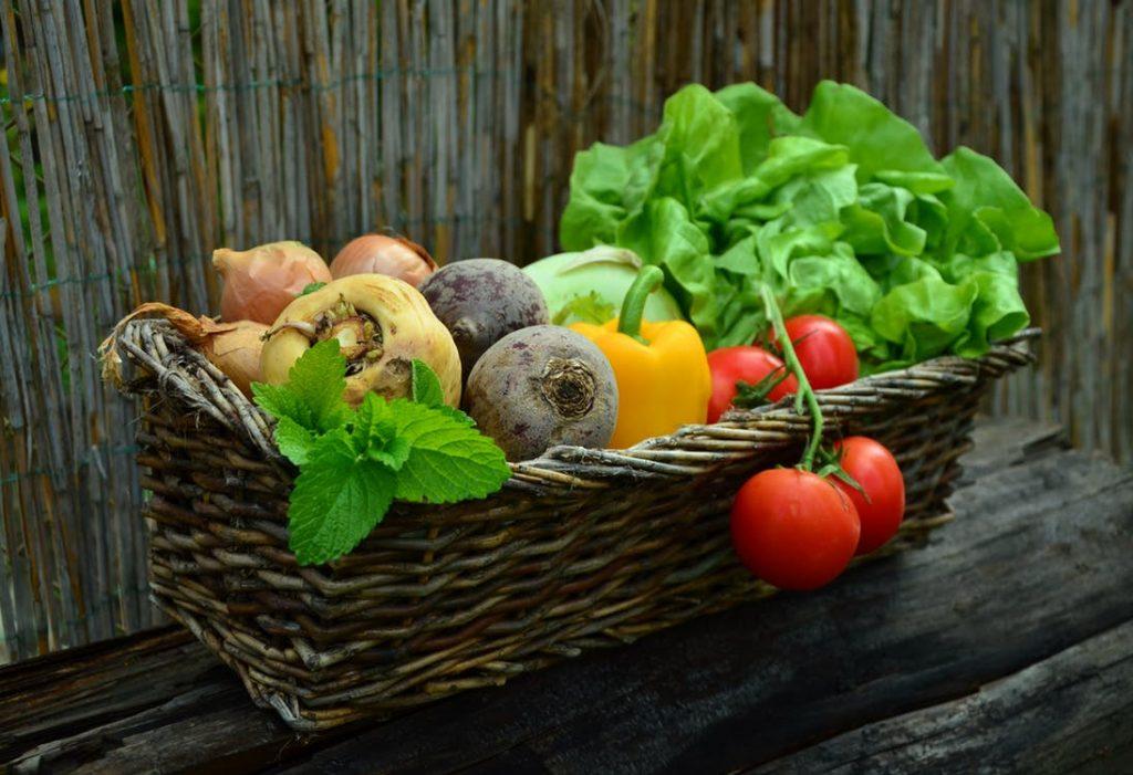Le régime Seignalet : l'un des régimes minceur les plus sains